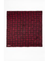 Zadig & Voltaire - Simi Skull Scarf - Lyst