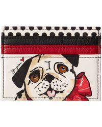 Brighton   Fashionista Paris Pug Card Case   Lyst
