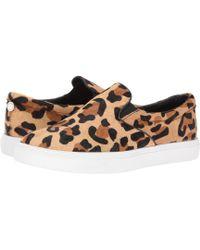 9ff874fffbd Steve Madden - Ecentrcl Sneaker (leopard) Women s Shoes - Lyst