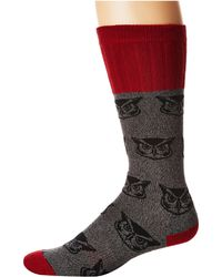Socksmith - Owl - Lyst