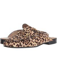 7fa47220aa6a Sam Edelman - Linnie (neutral Multi Shepards Plaid) Women s Clog mule Shoes  -