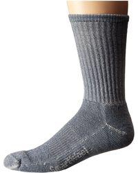 Smartwool - Hike Light Crew (denim) Crew Cut Socks Shoes - Lyst