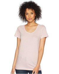 Pendleton - Short Sleeve Pima Stripe Tee (zephyr/marshmallow Stripe) Women's Clothing - Lyst