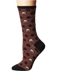 Socksmith | Pugka-dot | Lyst