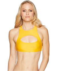 Speedo - Sydney Bikini Top - Lyst