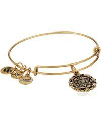 ALEX AND ANI - Lotus Peace Petals Iv Bangle (rafaelian Silver) Bracelet - Lyst