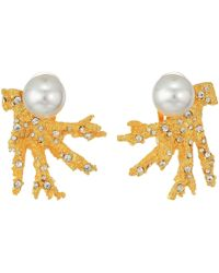 Kenneth Jay Lane - Satin Gold Branch W/ Crystal Dots And White Pearl Top Clip Earrings (satin Gold/crystal/white Pearl) Earring - Lyst