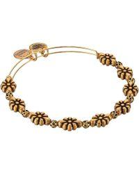 ALEX AND ANI - Blossom Beaded Bangle Bracelet (rafaelian Gold) Bracelet - Lyst