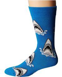 Socksmith - Shark Attack - Lyst