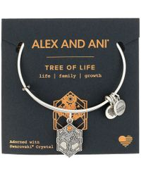ALEX AND ANI - Path Of Symbols - Tree Of Life Iv Bangle - Lyst