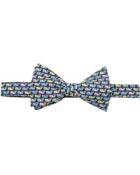 Vineyard Vines - Pastel Whale Printed Bow Tie - Lyst
