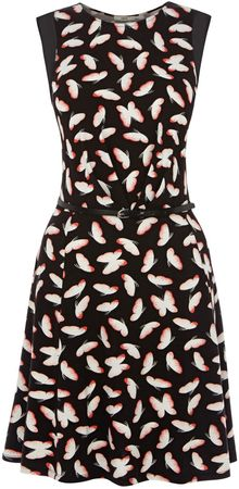 Oasis Deco Butterfly Skater Dress - Lyst