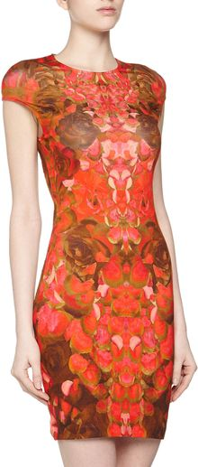 McQ by Alexander McQueen Floralprint Stretch Dress Pinkbrown - Lyst