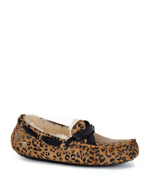 Ugg Dakota Leopard Bow Tie Slipper In Brown Save 10 Lyst
