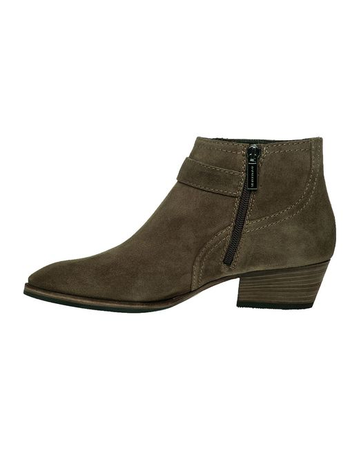 aquatalia suede ankle boots in brown taupe suede
