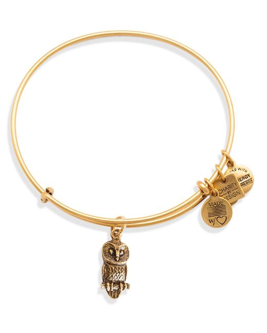 ALEX AND ANI   Metallic Ode To The Owl Expandable Wire Bangle, Charity By Design Collection   Lyst