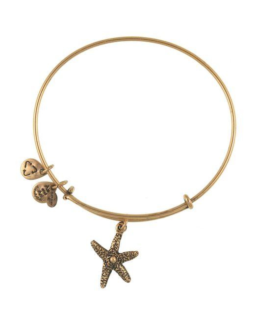 ALEX AND ANI   Metallic Starfish Bangle   Lyst