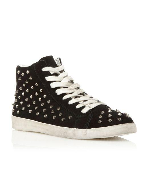 Steve Madden   Black Twynkle Sm Studded Trainer Shoes   Lyst