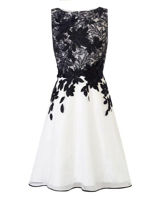 Coast   Black Anabelle Artwork Dress   Lyst