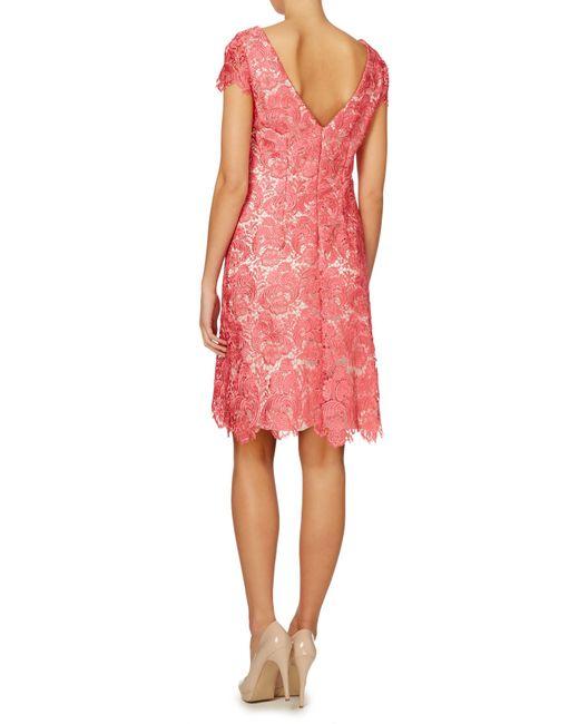 Eliza j Lace Guipure Cap Sleeve Dress in Pink | Lyst
