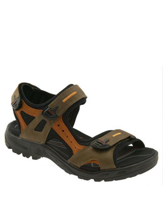 Ecco Shoes Womens M Black Sandal