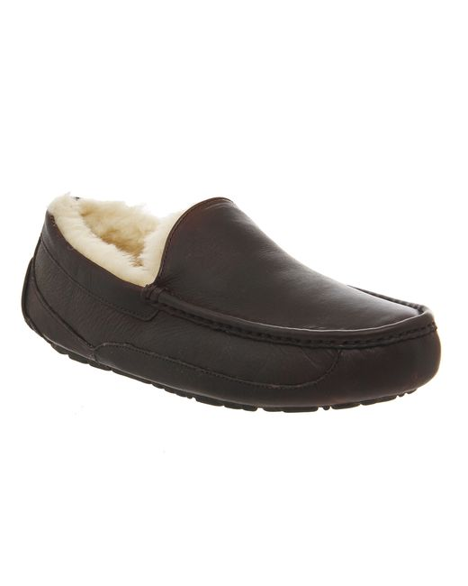 ugg ascot slippers sale