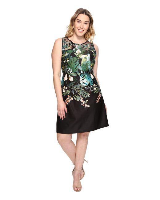 Adrianna Papell - Black Plus Size Leafy Oasis Scuba A-line Dress With Laser Cut Neckline - Lyst