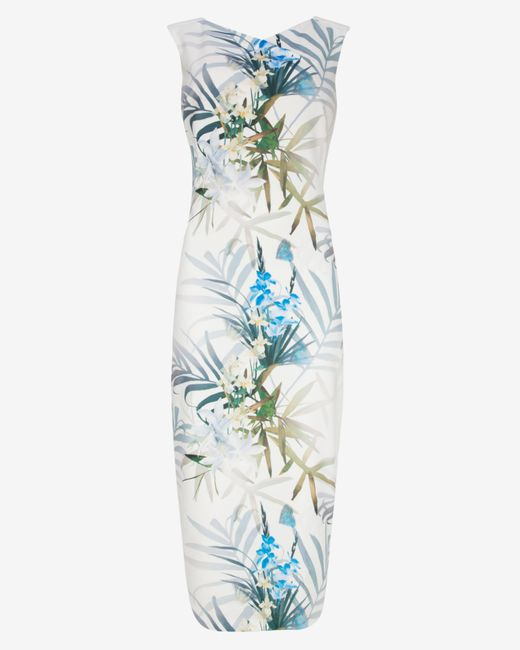 Ted Baker   Green Loua Twilight Floral Midi Dress   Lyst
