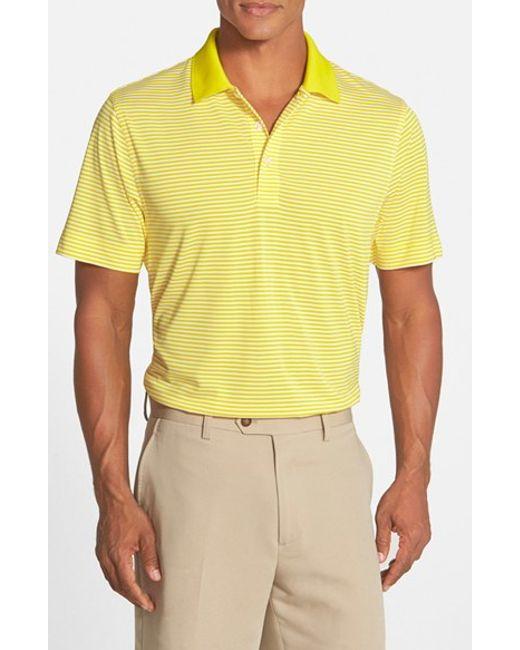 Cutter & Buck | White 'trevor' Drytec Moisture Wicking Golf Polo for Men | Lyst