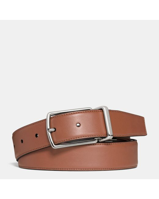 COACH | Brown Modern Harness Cut-to-size Reversible Smooth Leather Belt | Lyst