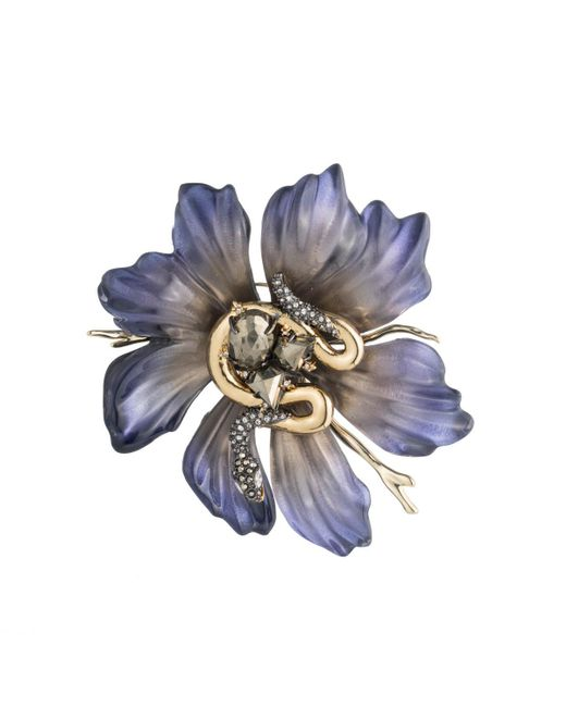 Alexis Bittar   Blue Lucite Flower And Snake Pin You Might Also Like   Lyst