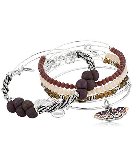 ALEX AND ANI - Metallic S Moth Bracelet Set Of 5 - Lyst