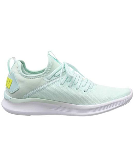 PUMA Ignite Flash Evoknit Sr Wn's Competition Running Shoes