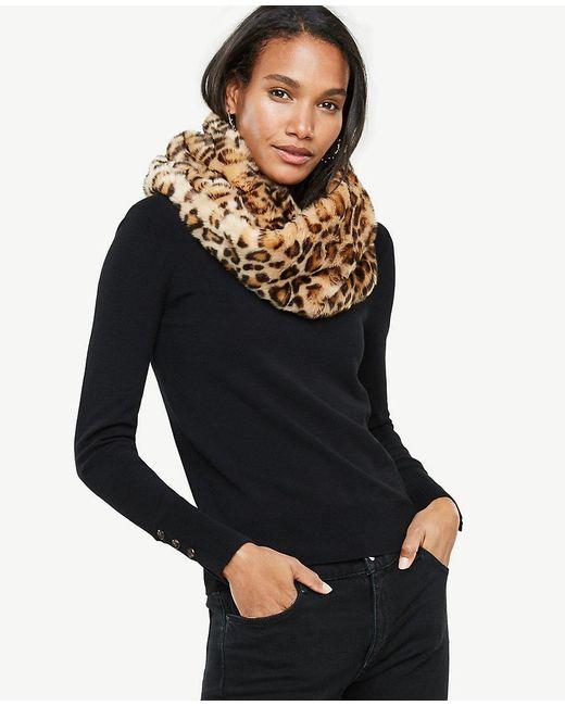 Ann Taylor | Black Cheetah Faux Fur Snood | Lyst