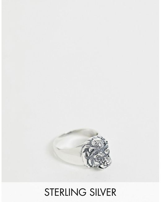 ASOS - Metallic Ring mit Löwenkopf aus Sterlingsilber for Men - Lyst