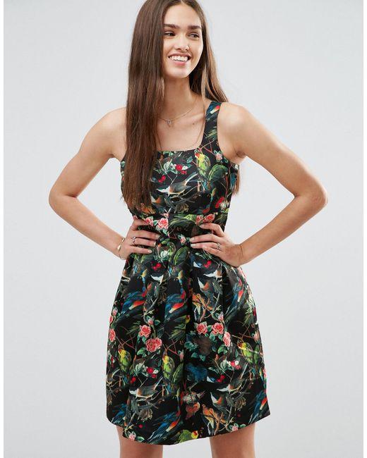 Darling | Black Floral Skater Dress | Lyst