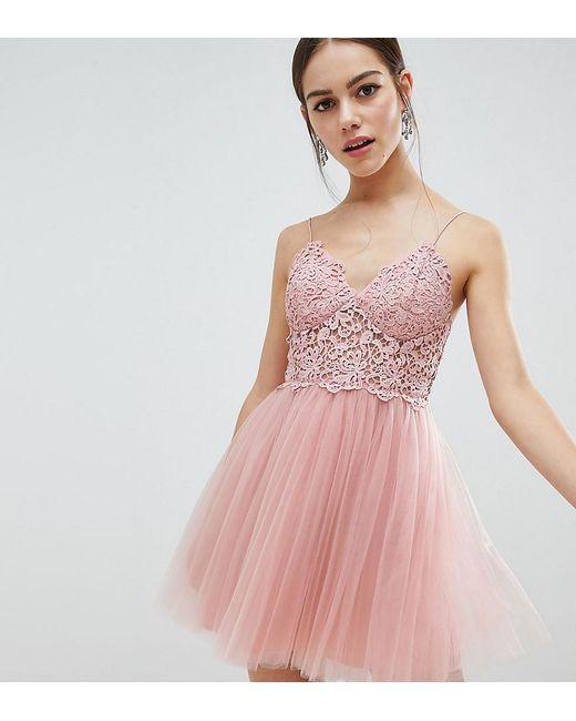 ASOS - Pink Asos Design Petite Premium Lace Cami Top Tulle Mini Dress - Lyst