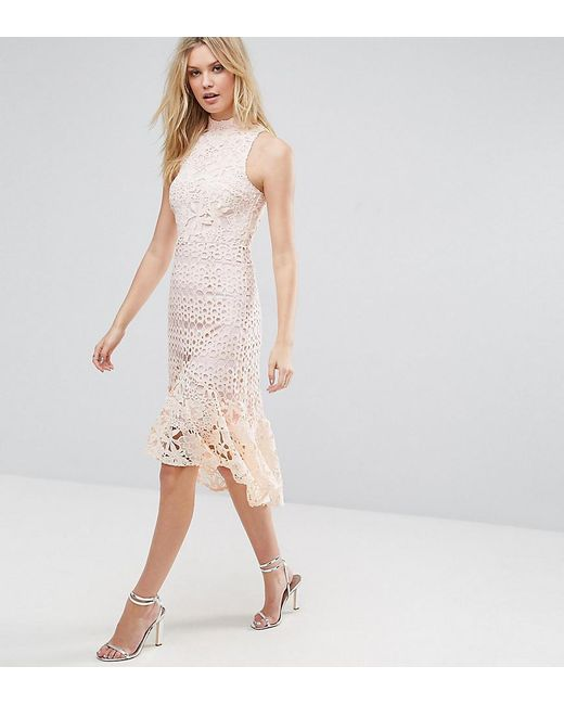 True Decadence - Pink Allover High Neck Premium Lace Midi Dress - Lyst