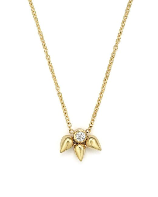 """Zoe Chicco 