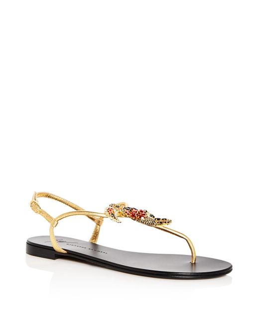 Giuseppe Zanotti - Multicolor Women's Toucan Embellished Leather T-strap Sandals - Lyst