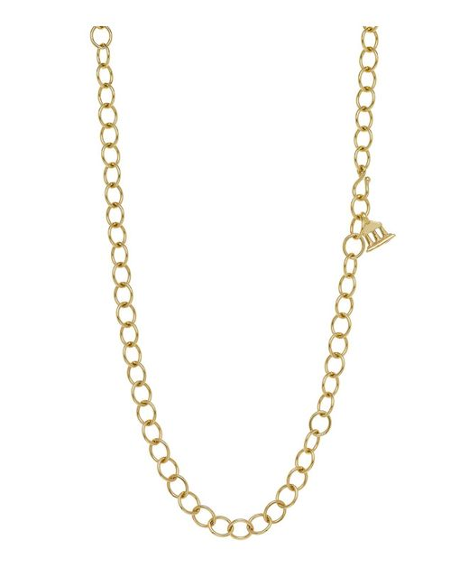 Temple St. Clair | Metallic 18k Yellow Gold Oval Chain Necklace, 24"