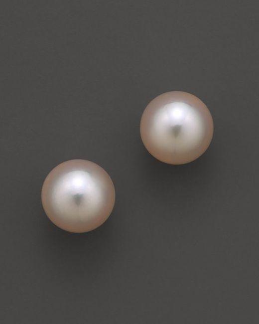 Tara Pearls   Metallic Akoya Cultured Pearl Stud Earrings, 8mm   Lyst