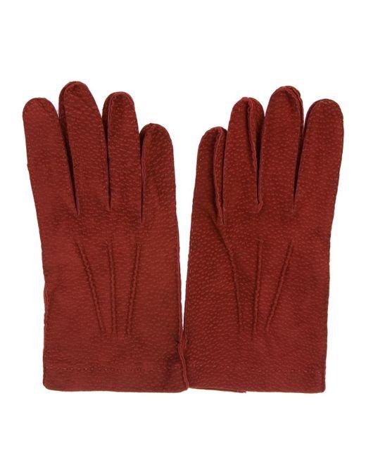 Merola Gloves - Red Capybara Sfoderato for Men - Lyst