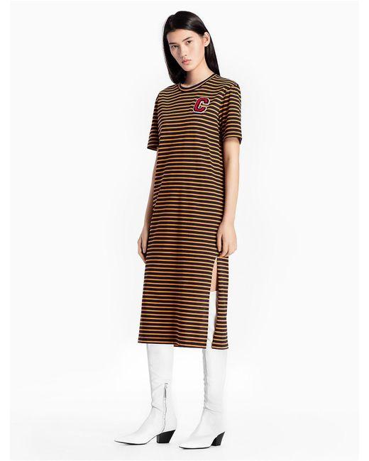 Calvin Klein Brown Cotton Knit Striped C Badge Dress Lyst