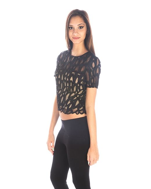 Find black short sleeve crop top at ShopStyle. Shop the latest collection of black short sleeve crop top from the most popular stores - all in one.