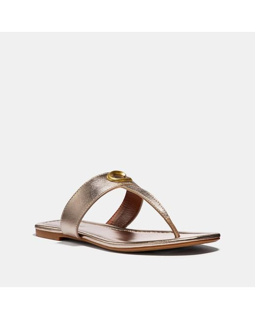 a34196b25b6 Lyst - COACH Jessie Sandal in Brown