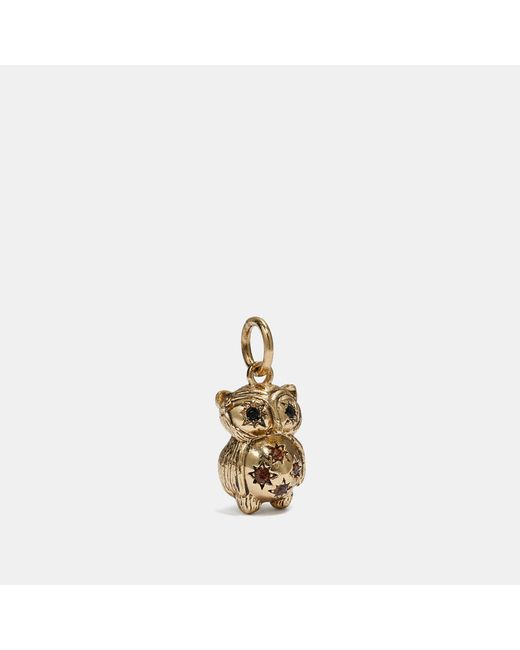 COACH Metallic Owl Charm
