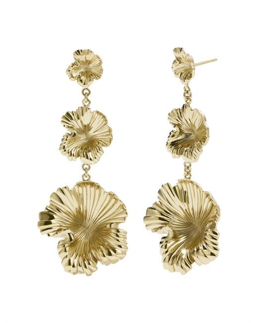 Meadowlark - Metallic Coral Drop Earrings - Lyst