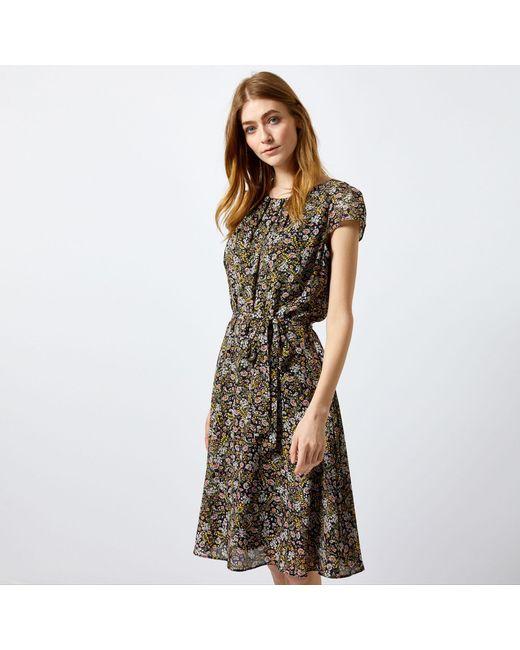 Dorothy Perkins - Billie & Blossom Tall Black Disty Print Knee Skater Dress - Lyst