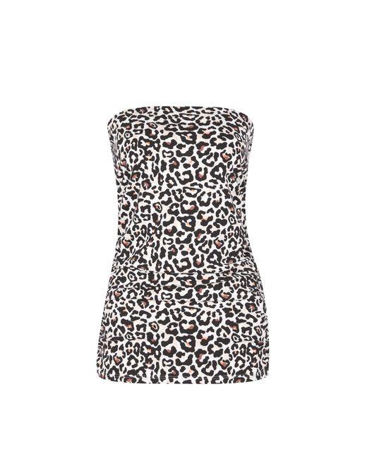 Dorothy Perkins - Black Multi Coloured Leopard Print Bandeau Top - Lyst